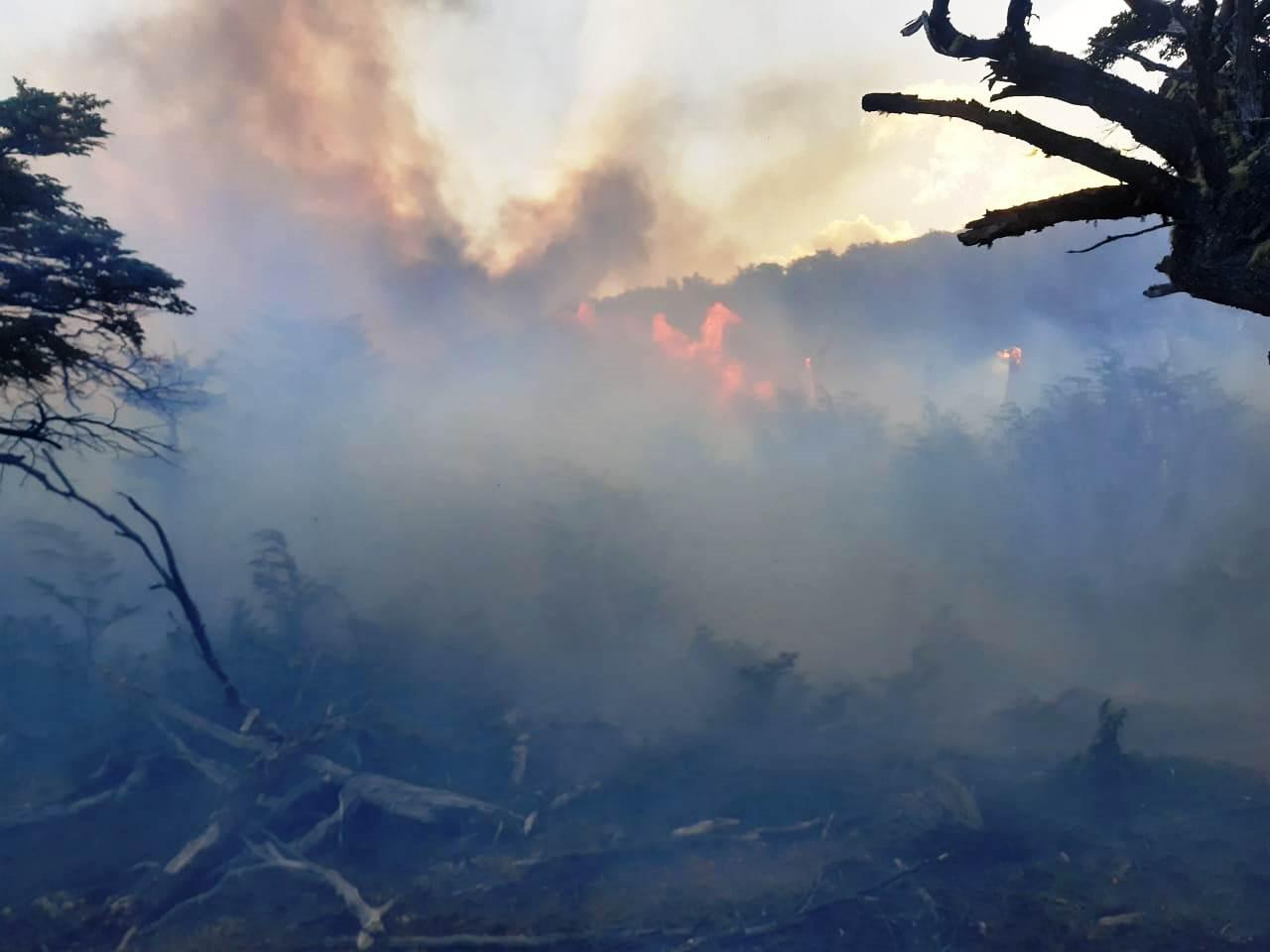 incendio Estancia Cristina