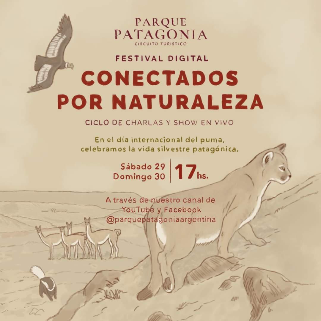 Afiche Festival Dia Internacional del Puma